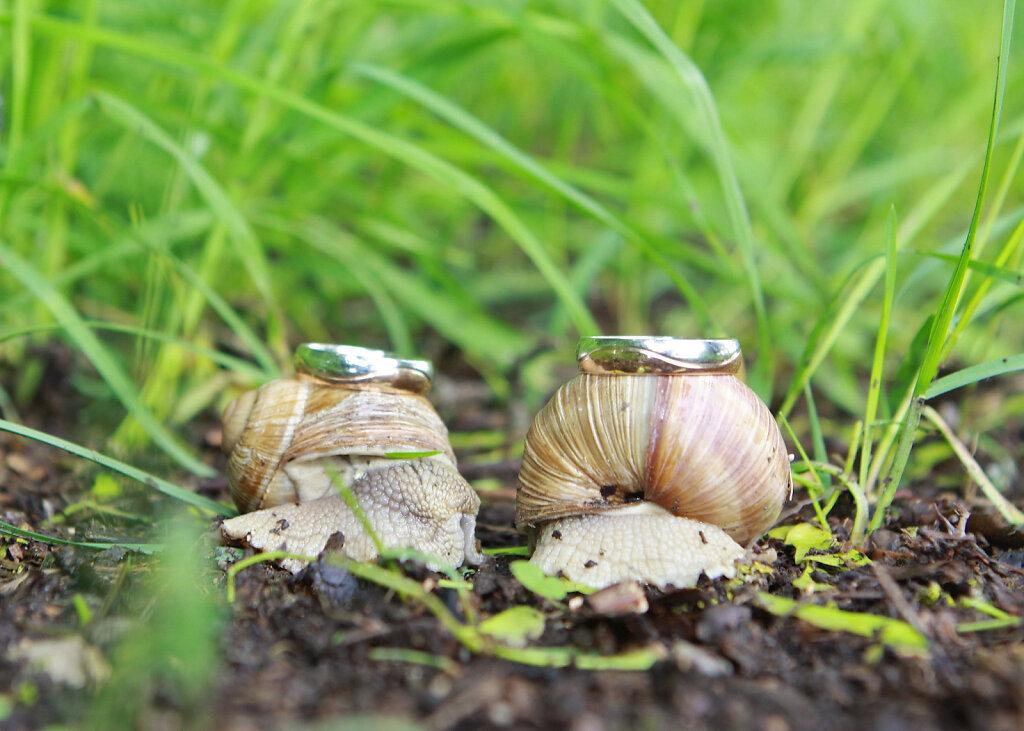 Hochzeit2-17.jpg